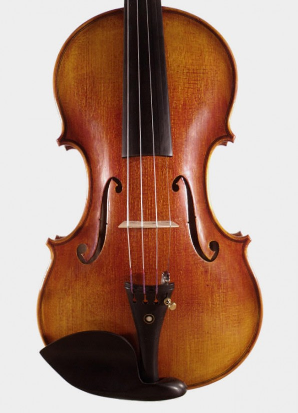 Violon Unique Sayil