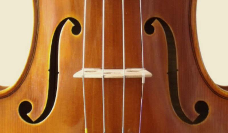 cordes pour violon