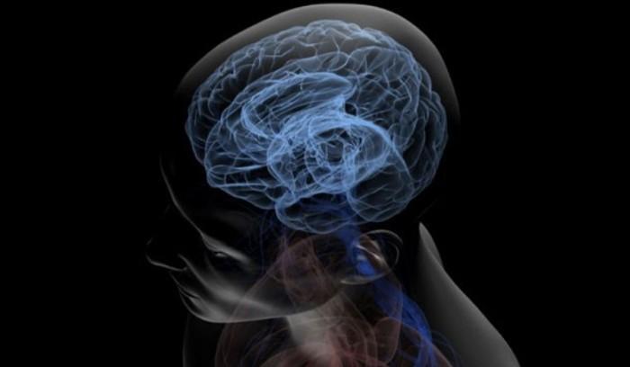 musique et développement cérébral