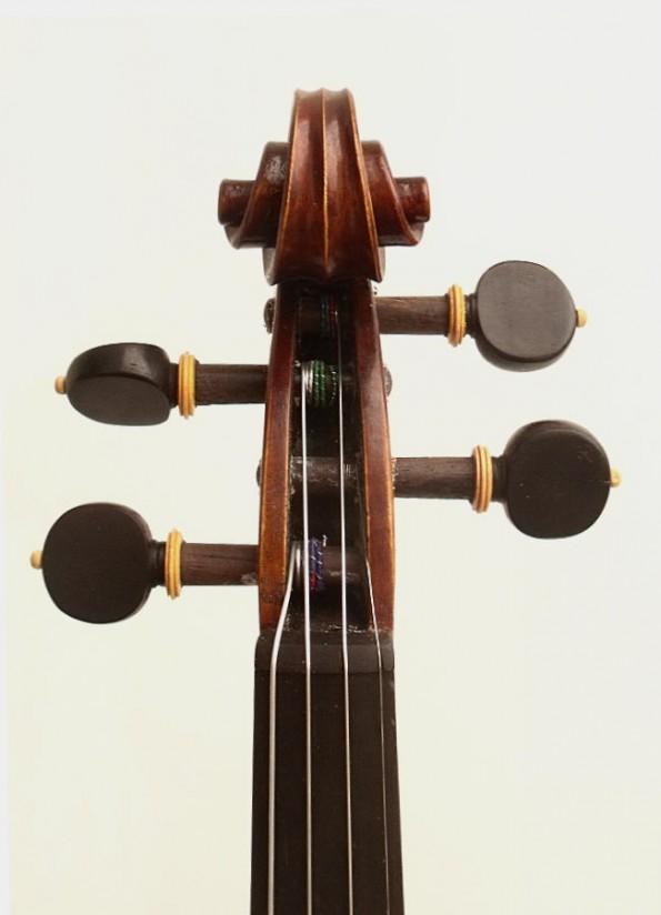 a-violon-organique-02-5