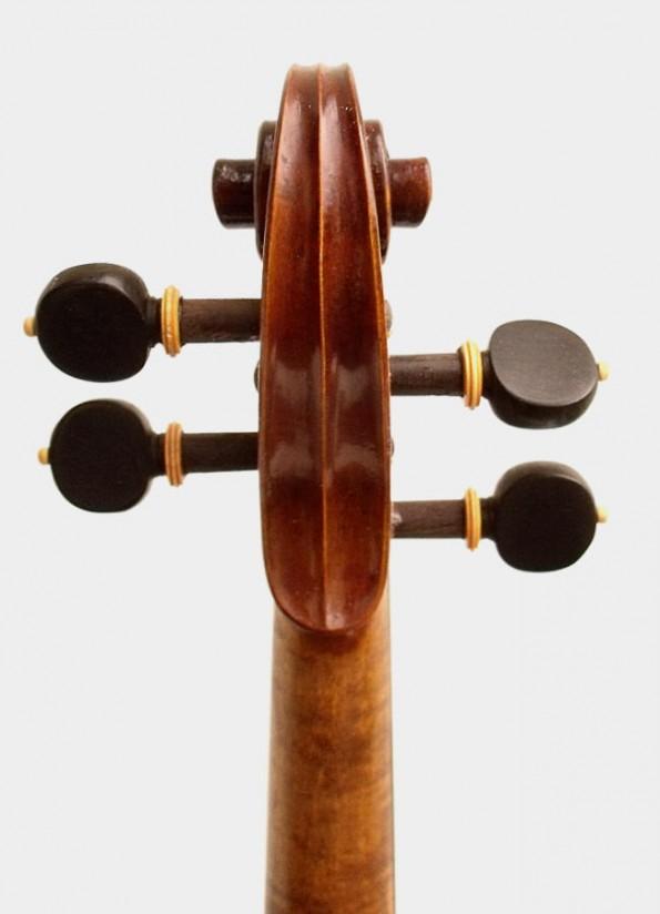 a-violon-organique-02-6