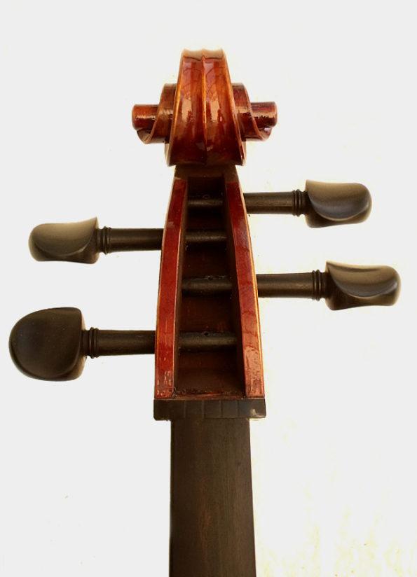 Violoncelle Unique Brillance
