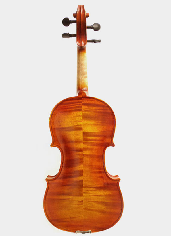 Violon Unique Bleone