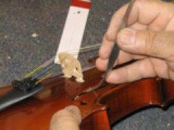 Alma del violín 6
