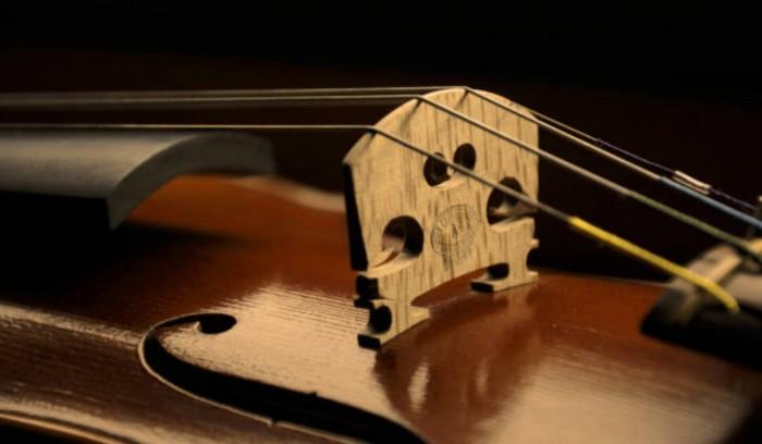 Meilleurs violons du monde