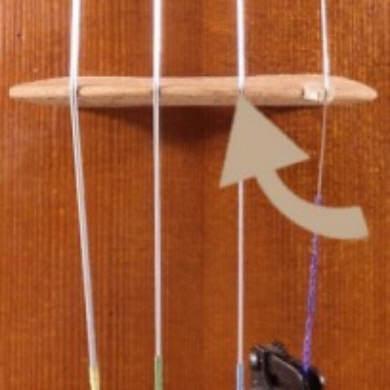 Vérifier l'emplaccement des cordes sur le chevalet