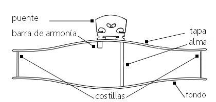 la física y el violín corte de un violín