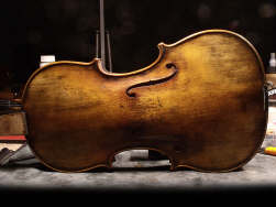 violon-professionnel-las-mercedes-th