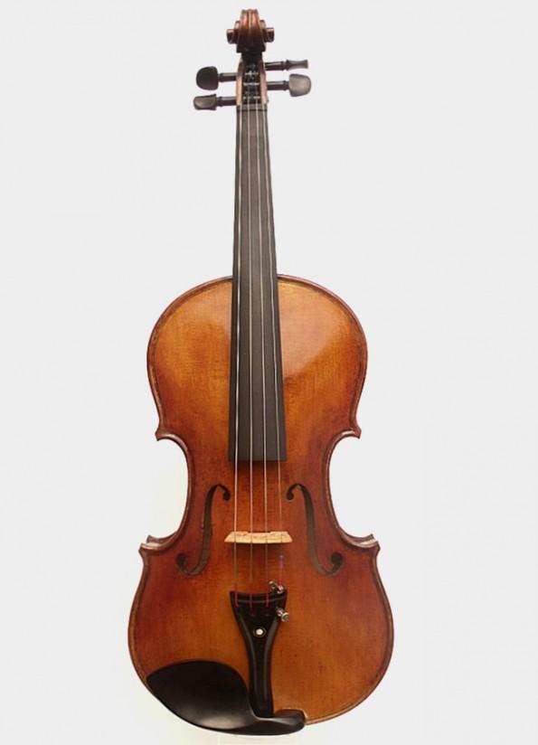 Violon Professionnel