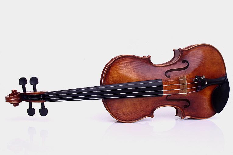 a-violon-organique-01-8