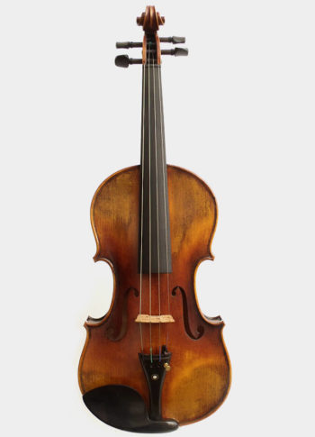 Violon Unique Albarine