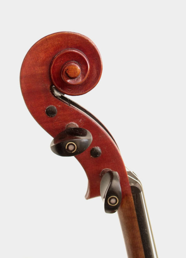 Violon Unique Lys