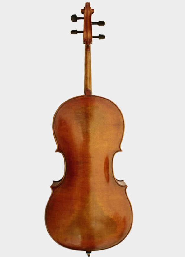 Violoncelle Unique Druise